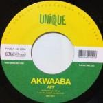 akwaaba watergirls