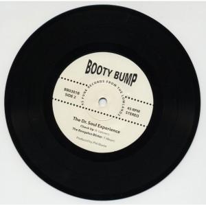 """dr soul 7"""" vinyl"""